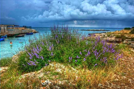 arriva la pioggia a Cala Fetente - Polignano a mare (4454 clic)