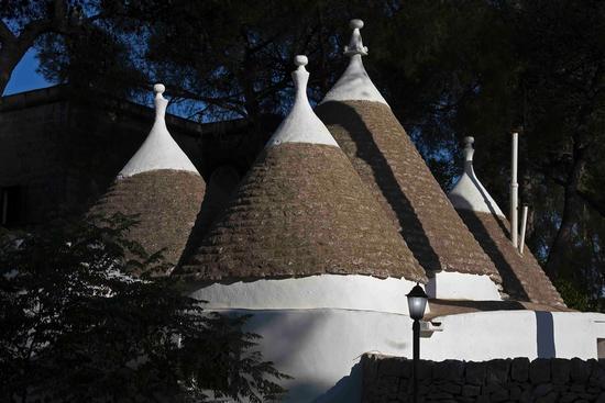 Tenuta deserto - San michele salentino (2054 clic)