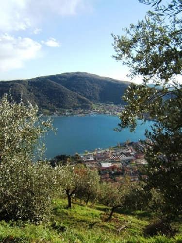 lago d'Iseo: panorama dalla collina - Sarnico (3754 clic)