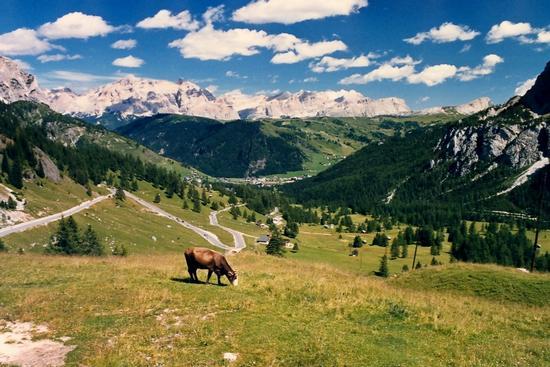 La Val Badia e dintorni - Corvara in badia (1499 clic)