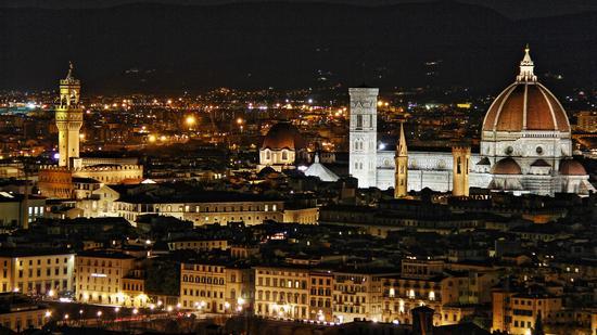 Immagine notturna dei monumenti di Firenze (1806 clic)