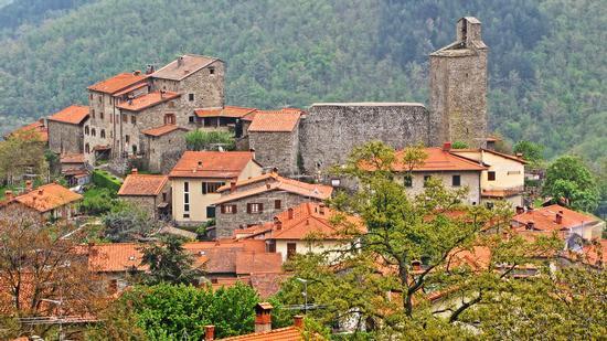 Castello dei Conti Guidi e dintorni - Montemignaio (1178 clic)