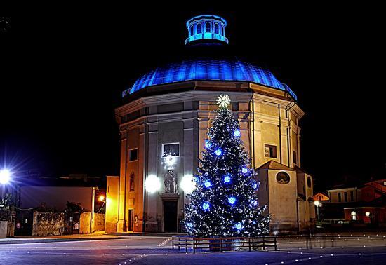 L'albero in piazza. - Loano (2656 clic)