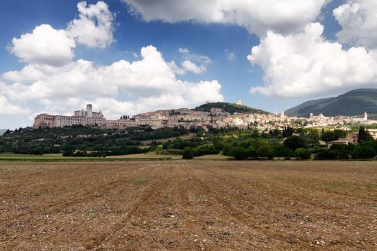 Tra terra e cielo - Assisi (2332 clic)