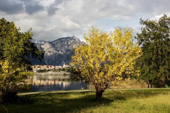 Primi colori d'Autunno - Annone di brianza (631 clic)