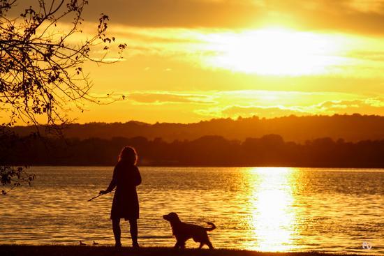 Lei e il cane - Bosisio parini (961 clic)