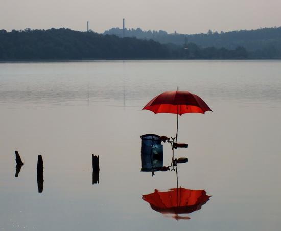 L'ombrello rosso - Bosisio parini (1750 clic)