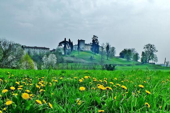 IL CASTELLO DURINI   - ALZATE BRIANZA - inserita il 22-Apr-13