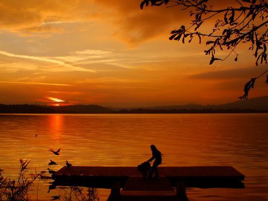 Al tramonto - Bosisio parini (2027 clic)
