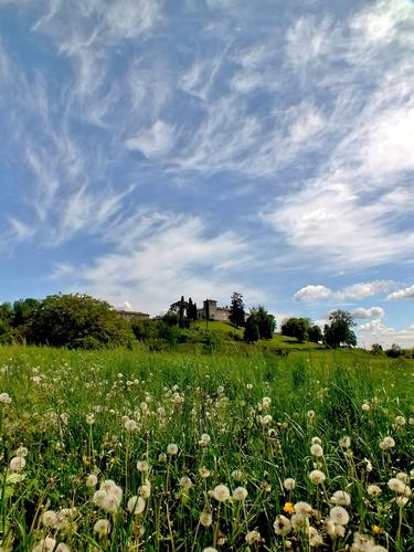 SOFFIONI - Alzate brianza (1262 clic)