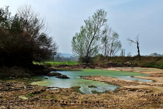 COLORI - Besana in brianza (912 clic)