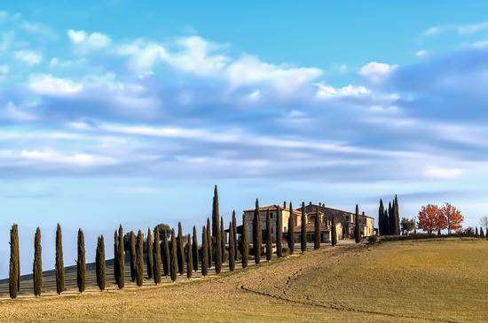 Panorama - Val d'orcia (3571 clic)