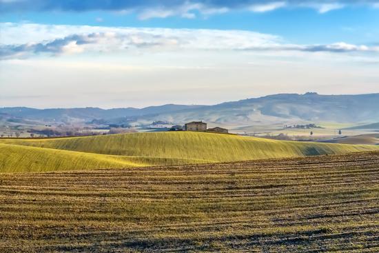 Landscape - Val d'orcia (1359 clic)