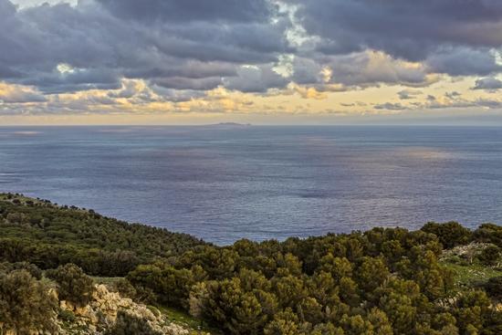 Panorama da M.Pellegrino (PA) - Palermo (2122 clic)