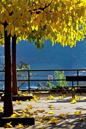 Autumn in Turin - Torino (1033 clic)