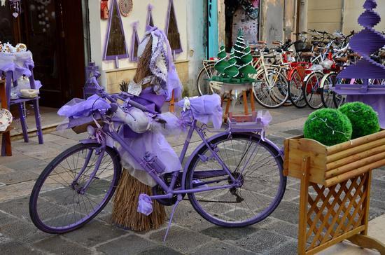 Una bici speciale - Lecce (1047 clic)