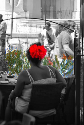 Il fiocco rosso - Lecce (1110 clic)