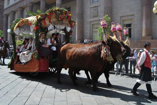 Cavalcata Sarda 2014 - Sassari (1457 clic)