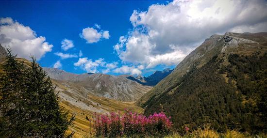 Vista Montafiato - Chianale (462 clic)