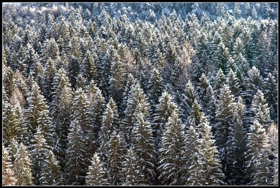 Inverno - Ledro (1339 clic)