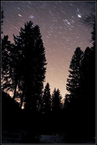 Notte stellata in Concei (3234 clic)