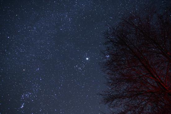 Una notte stellata - Ledro (2985 clic)