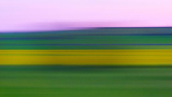 Pittura campestre - Modica (3201 clic)
