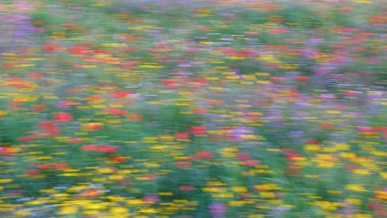 Van Gogh ? - Modica (2256 clic)