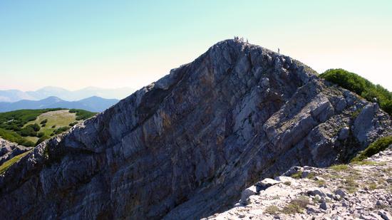 Cozzo del Pellegrino - San donato di ninea (921 clic)