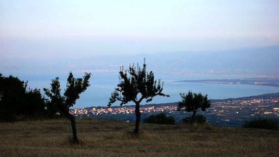 Lungo la strada per Plataci - Villapiana (897 clic)