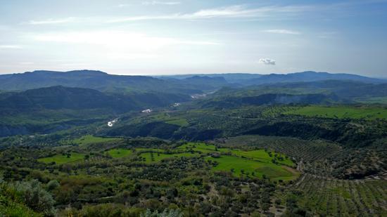 da Cerenzia Vecchia - Crotone (1052 clic)