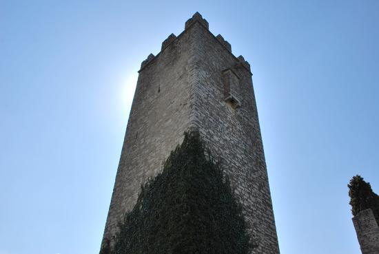 torre del castello - Vezio (1035 clic)
