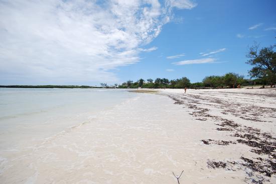 Madagascar baia di Sakalava (566 clic)