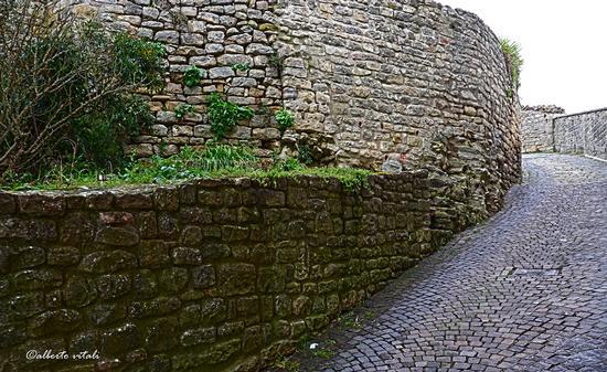 Penna San Giovanni (MC) Scorcio di Via della Colta (813 clic)