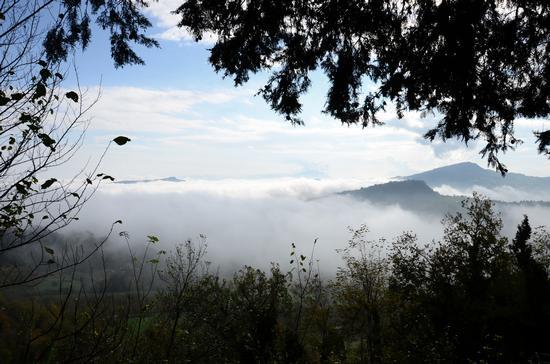 Nebbie di Novembre (2012)-2 - Penna san giovanni (876 clic)