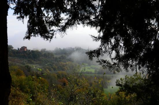 Nebbie di Novembre (2012)-3 - PENNA SAN GIOVANNI - inserita il 03-Apr-13