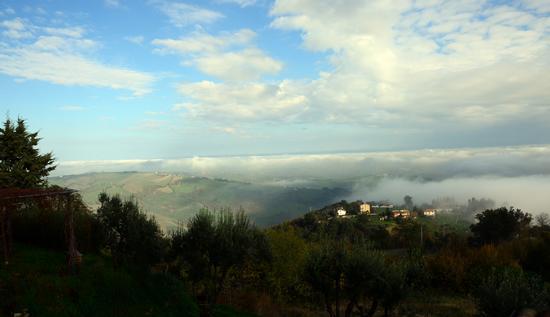 Nebbie di Novembre (2012)-4 - Penna san giovanni (1123 clic)