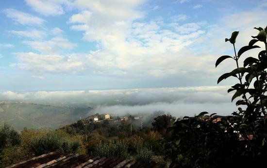 Nebbie di Novembre (2012)-6 - Penna san giovanni (879 clic)