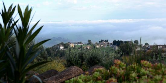 Nebbie di Novembre (2012)-7 - Penna san giovanni (837 clic)