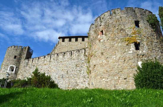 Castello di Gorizia (1514 clic)