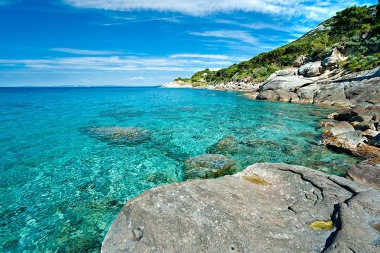 Spiaggia di Capo Bianco - Isola d'Elba (1452 clic)