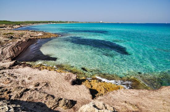 Baia di Punta della Suina - Gallipoli (795 clic)