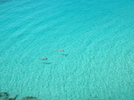 Baia dei Conigli - Lampedusa (2371 clic)