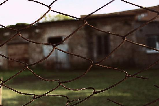 imprigionati. - Roma (785 clic)