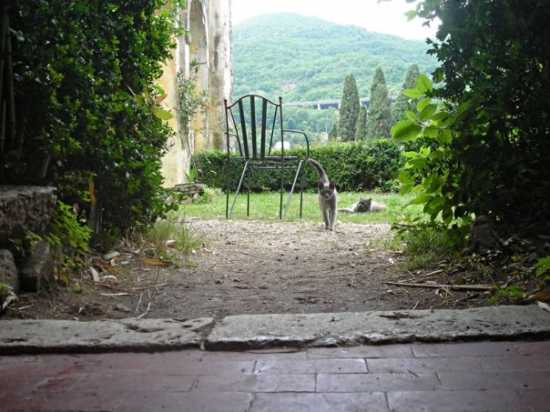Nel Castello Massimo di Arsoli (3289 clic)