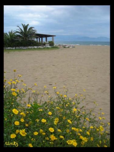 La Spiaggetta - Terracina (3318 clic)