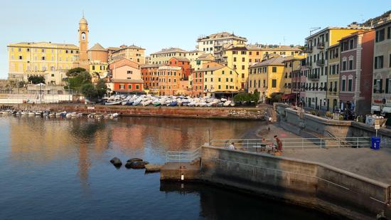 Il porticciolo di Genova Nervi (421 clic)