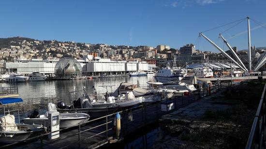 Porto antico - Acquario di Genova - Biosfera (385 clic)