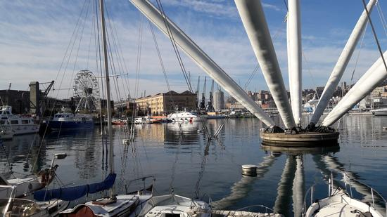 Porto antico - Genova (687 clic)