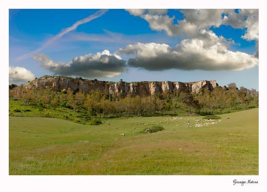paesaggio nisseno - Caltanissetta (530 clic)